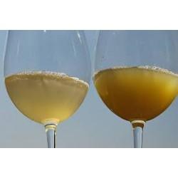 Želatin za bistrenje vina 1kg